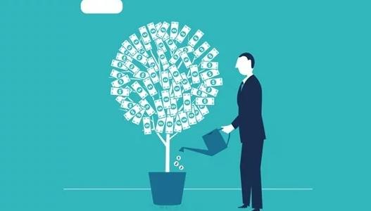 Money tree banner